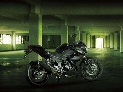 Агрессивный Kawasaki Z250 2013